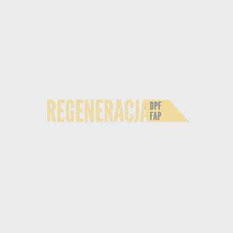 regeneracja DPF
